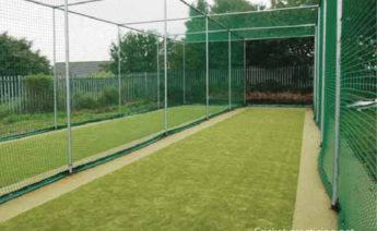 cricket-net